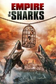 Imperium rekinów CDA