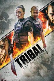 Tribal: Kanibale CDA