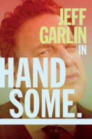 Handsome: A Netflix Mystery Movie CDA