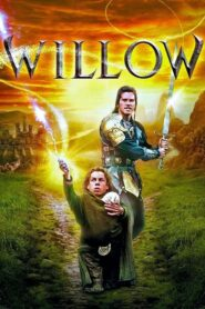 Willow CDA