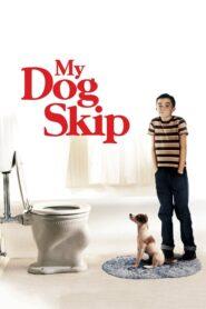 My Dog Skip CDA