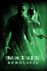 Matrix Rewolucje CDA
