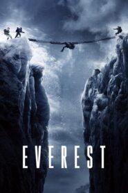 Everest CDA