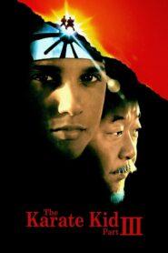 Karate Kid III CDA