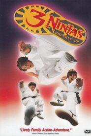 Małolaty Ninja na wojennej ścieżce CDA
