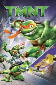 Wojownicze żółwie ninja CDA