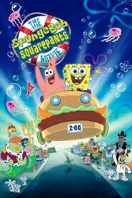 SpongeBob Kanciastoporty CDA