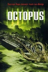 Octopus CDA
