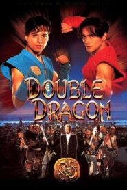 Double Dragon CDA