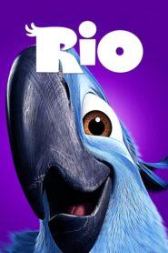 Rio CDA