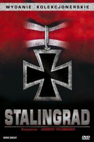 Stalingrad CDA