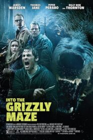 Grizzly CDA