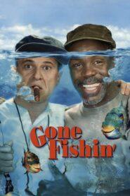 Przygoda na rybach CDA