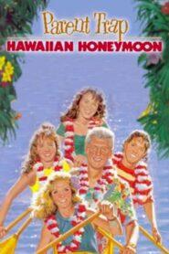 Parent Trap: Hawaiian Honeymoon CDA