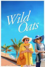 Wild Oats CDA