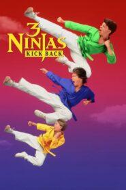 Małolaty ninja wracają CDA