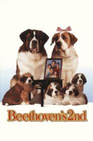 Beethoven 2 CDA