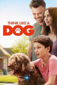 Think Like a Dog CDA