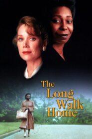 The Long Walk Home CDA