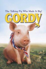 Gordy CDA