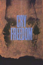 Krzyk wolności CDA
