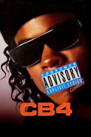 CB4 CDA