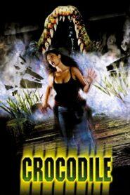 Crocodile CDA