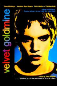 Velvet Goldmine CDA