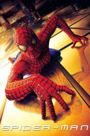 Spider-Man CDA