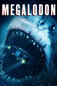 Megalodon CDA