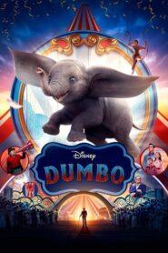Dumbo CDA