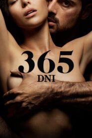 365 dni CDA