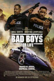 Bad Boys for Life CDA