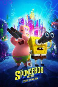 SpongeBob Film: Na ratunek CDA
