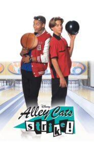 Alley Cats Strike CDA