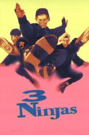 Trzech małolatów ninja CDA