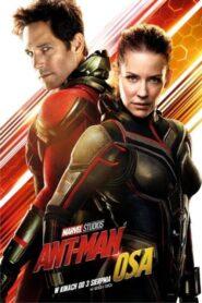 Ant-Man i Osa CDA