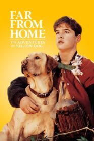Far from Home: The Adventures of Yellow Dog CDA