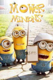 Minionki: Mower Minions CDA