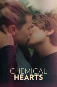 Chemical Hearts CDA