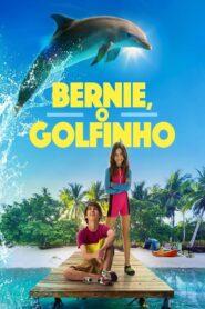 Bernie the Dolphin CDA