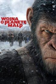 Wojna o planetę małp CDA