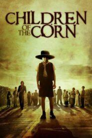 Dzieci Kukurydzy CDA