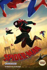 Spider-Man Uniwersum CDA