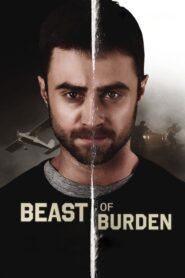 Beast of Burden CDA