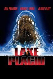 Aligator – Lake Placid CDA