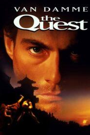 The Quest CDA