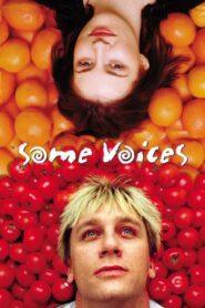 Some Voices CDA