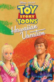 Toy Story: Wakacje na Hawajach CDA