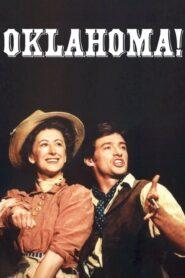 Oklahoma! CDA